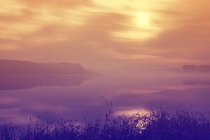 Autumn morning thick fog lake scenery by sunny2011bj