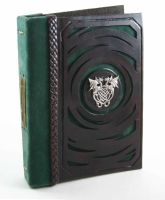 Green Dragons Leather Book by McGovernArts