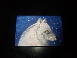 Arctic Wolf painted box by ArcticIceWolf