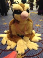 Katsucon 2014: Pidgey used Covet by murkrowzy