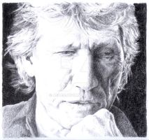 Roger Waters thinks of  DSOTM by Araen