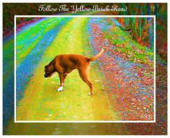 Follow The Yellow Brick Road by faery-dustgirl