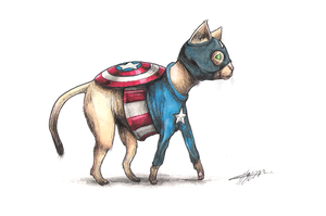 Captain Americat #3 by CAMERON1395