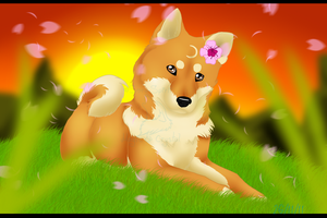 Sakura Sunset .:speed paint:. by Sora-Spirit