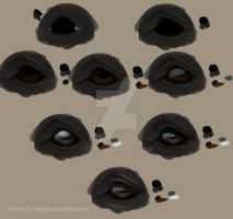 Realistic horse eyes by Zpya