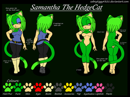 Samantha the hedgecat's Ref by smasher604