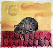 Cat Nap by Comacold