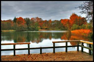Colors of the fall_ HDR by simoner