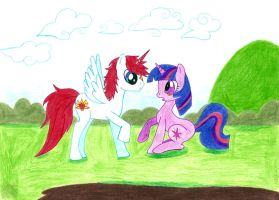 Flame and Twilight by aprict