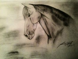 horse by tracieodette