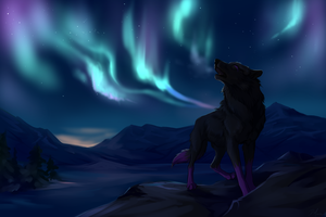 Northern Lights by Innali