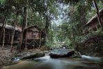 hdr - Royal Belum Forest 03 by mayonzz