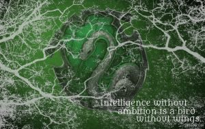 HP Wallpaper : Slytherin Lightning (with quote) by TheLadyAvatar