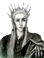 The Elven King by timii95