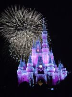 Wishes, 2009 - 34 by CanisCamera