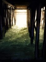 Under the Pier by Zakeno