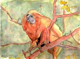 Golden lion tamarin by Cooki3Art