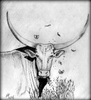 Bull by philippeL