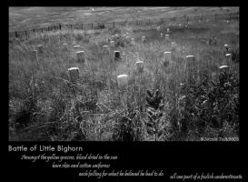 Battle of Little Bighorn by AlterEgox5
