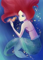 Ariel by vvlove