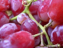 grapes by lizbeth010