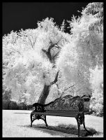 Lonely Bench - IR by PatrickTCPope