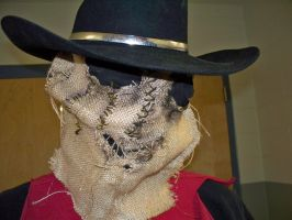 Scarecrow by OhSweetSerenity71892