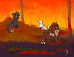 skyclan battle by kittenslobber