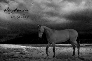 slowdance on the inside by lesliemarie-manips