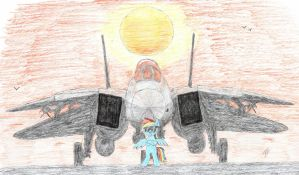 Rainbow Dash and F-14 by mzx-90