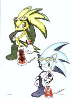 Sonic and Jet by Robie-Chan