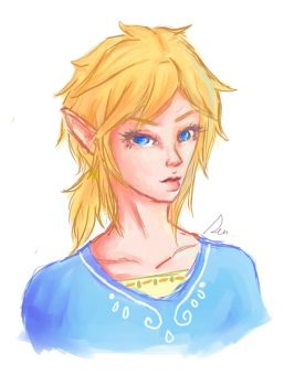 Ponytail Link by Lost-inFantasy