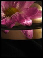 time stands still.... by harmonyrose