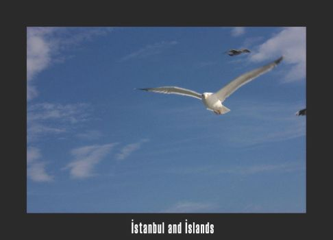istanbul and island04 by Sideover
