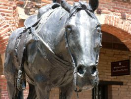 The Iron Horse by LDBussell