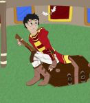 Quidditch Practice by CaptainKPeanuts
