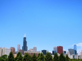 The Windy City by liquidozzwald