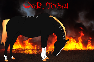 044 WoR Tribal by FoxtailRidgeStables