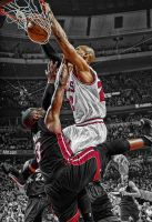 Taj Gibson Dunk on DWade by rhurst