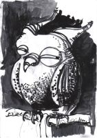 owl by timocles