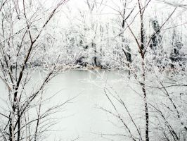 January is white 7 by martaraff