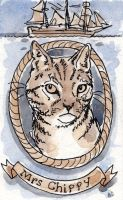 Ship Cat Series - Mrs Chippy of the Endurance by angelac