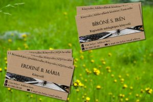 Two-sided Name card by KungfuHamster