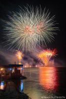 Fireworks for the Danube by AlecsPS