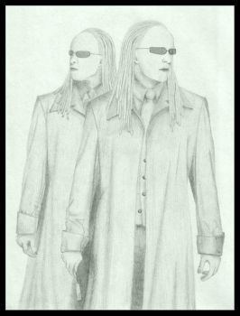 MATRIX RELOADED -- The Twins by sca