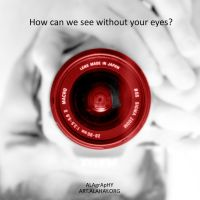 Our eyes are made in Japan by alahay