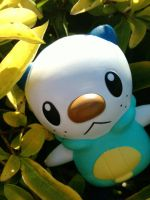 Oshawott on a hedge by Quacksquared