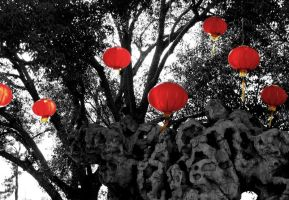 Chinese Lanterns by the-wandering-child