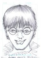 Harry Potter first year by 7and2