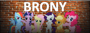 Brony Facebook Banner by Ezynell